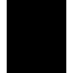 Τζάκια Pellet Νερού